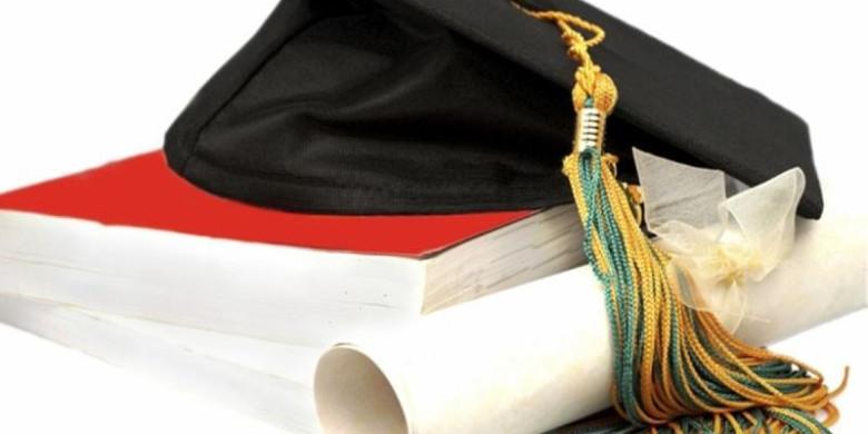 Высшее образование и работа по специальности