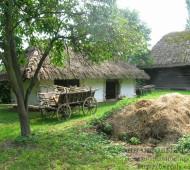 Бизнес в деревне. Идеи для бизнеса в сельской местности
