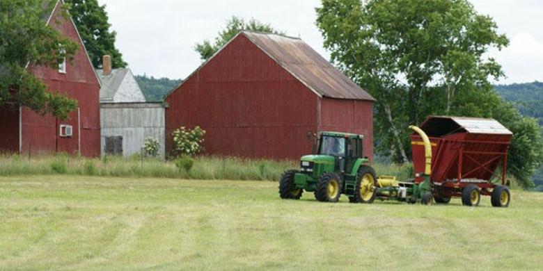 Фермерское хозяйство: преимущества и недостатки