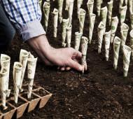 Куда вложить деньги в 2020 году?