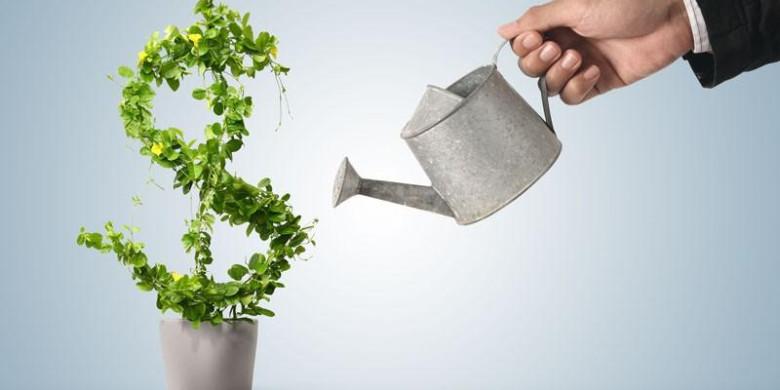 3 направления инвестирования