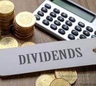 Дивидендные акции. Дивидендная стратегия инвестирования