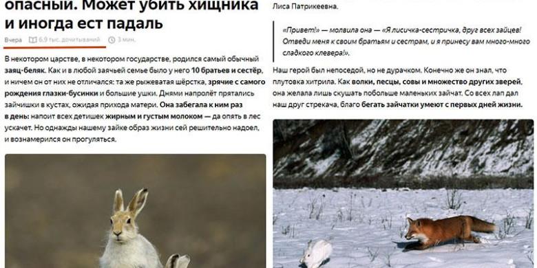Как написать статью в Яндекс.Дзен?