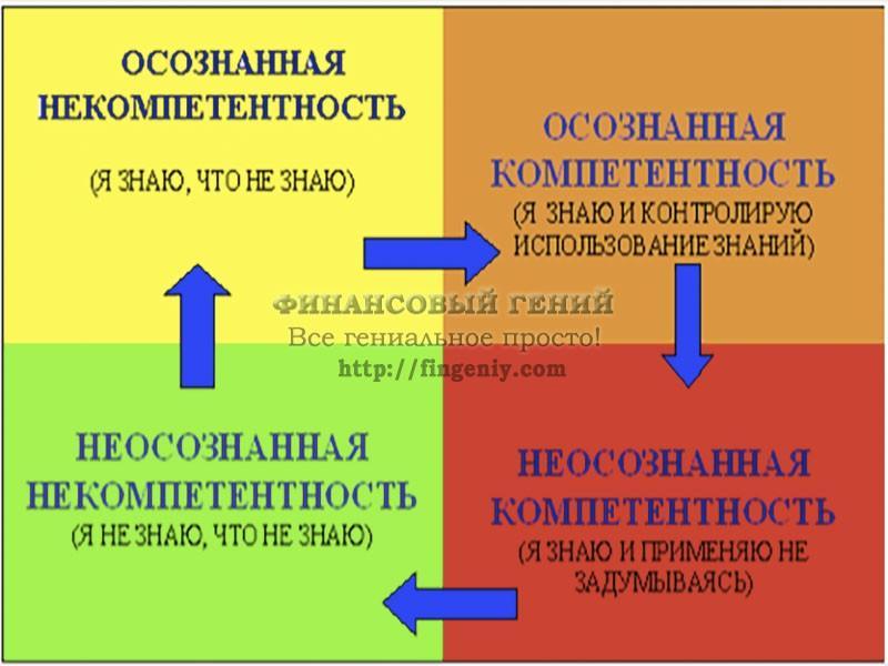 4 стадии обучения